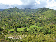Buch am Mittag Podcast - Wettbewerb um Land in Madagaskar, Laos und Myanmar